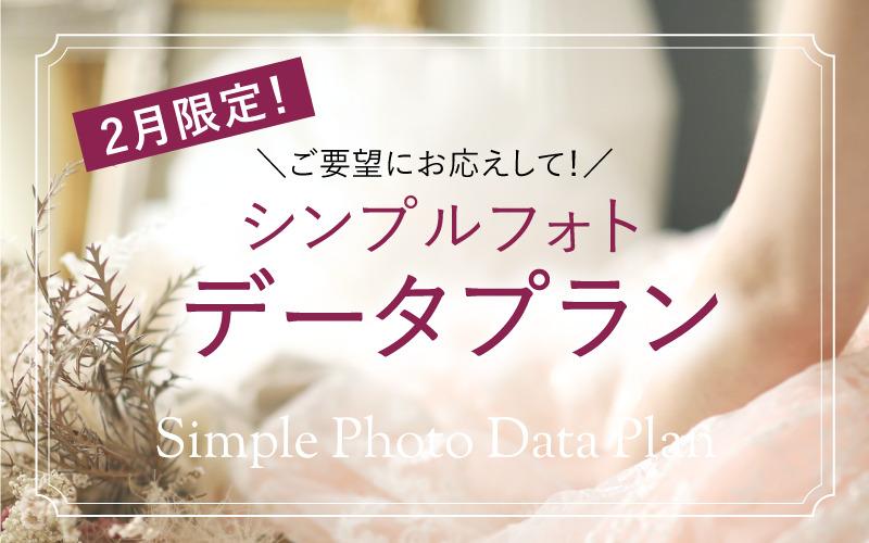 【2月限定!】シンプルフォトデータプラン