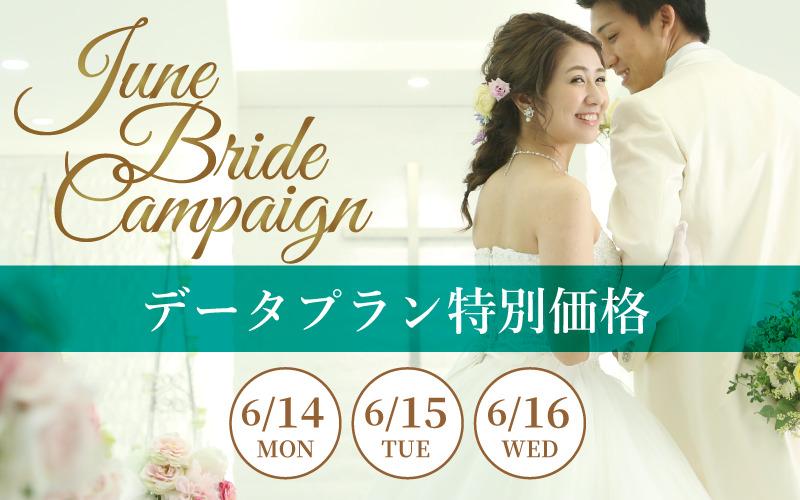 【June Bride キャンペーン】全データプランを特別価格でご提供!